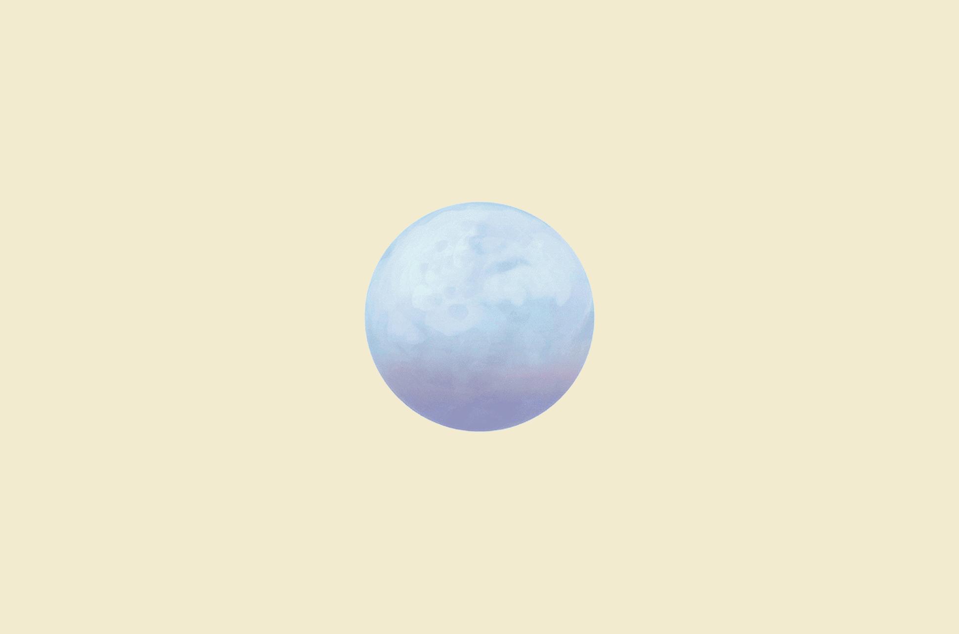 Pale Moon browser logo.
