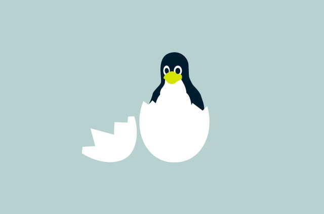 Linux Tux mascot emerging from egg shell