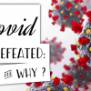Covid-19 defeated: how & why