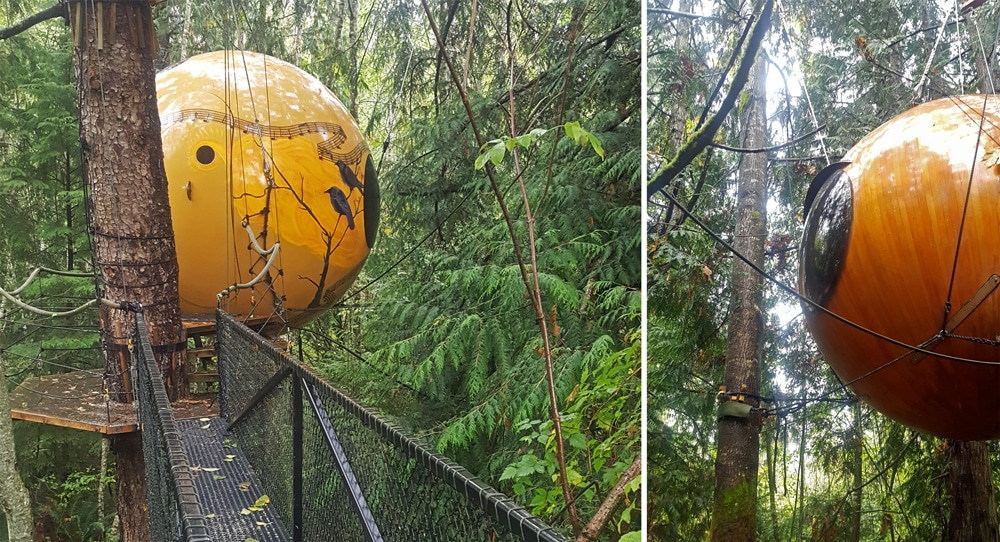 The Free Spirit Spheres hanging in the tree's