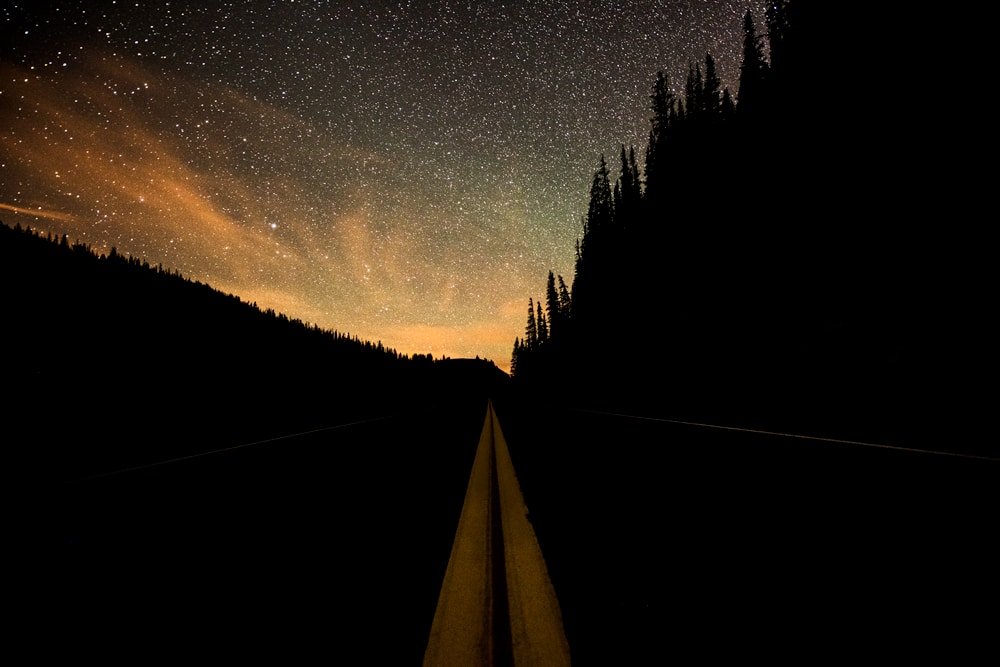 Yellow lines of the street with the stars in the night sky on Trail Ridge Road