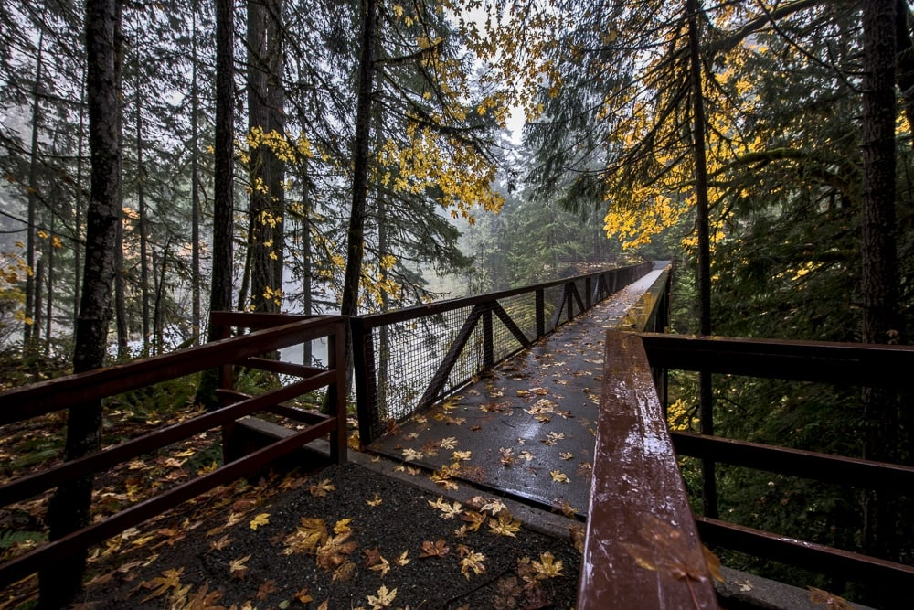 Bridge going over Englishman River Falls with autumn leaves