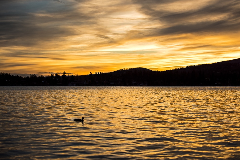 Sunset at Grand Lake by Gene Stover Lakefront Park with a duck swimming in the water