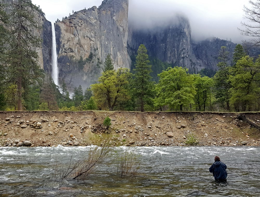 Guy fly fishing in the river with Yosemite Falls in the background