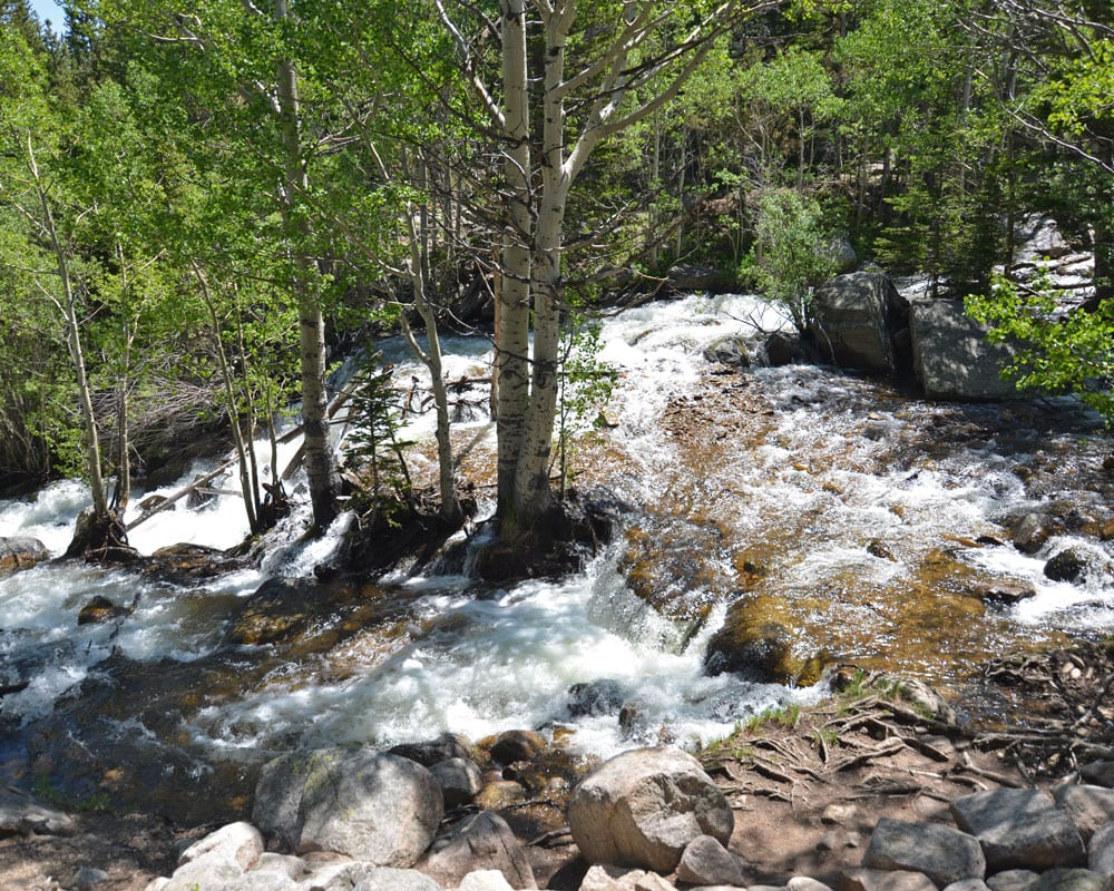 Alberta Falls, among the trees, which is the first destination on the hike to Sky Pond