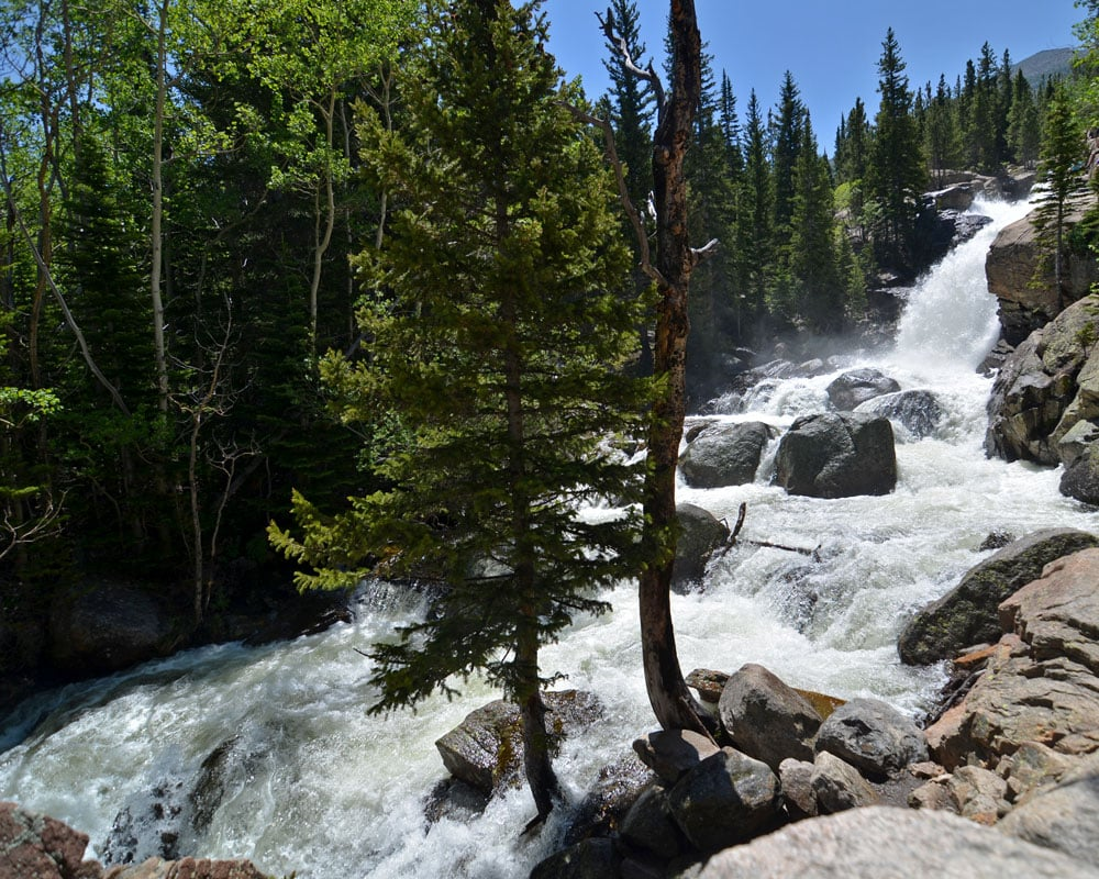 Alberta Falls heavily flowing during the summer.