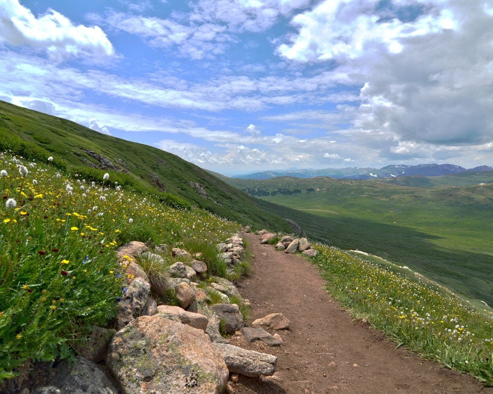 Most of the trail at the beginning of the hike to Mt. Bierstadt is pretty easy and well carved out.