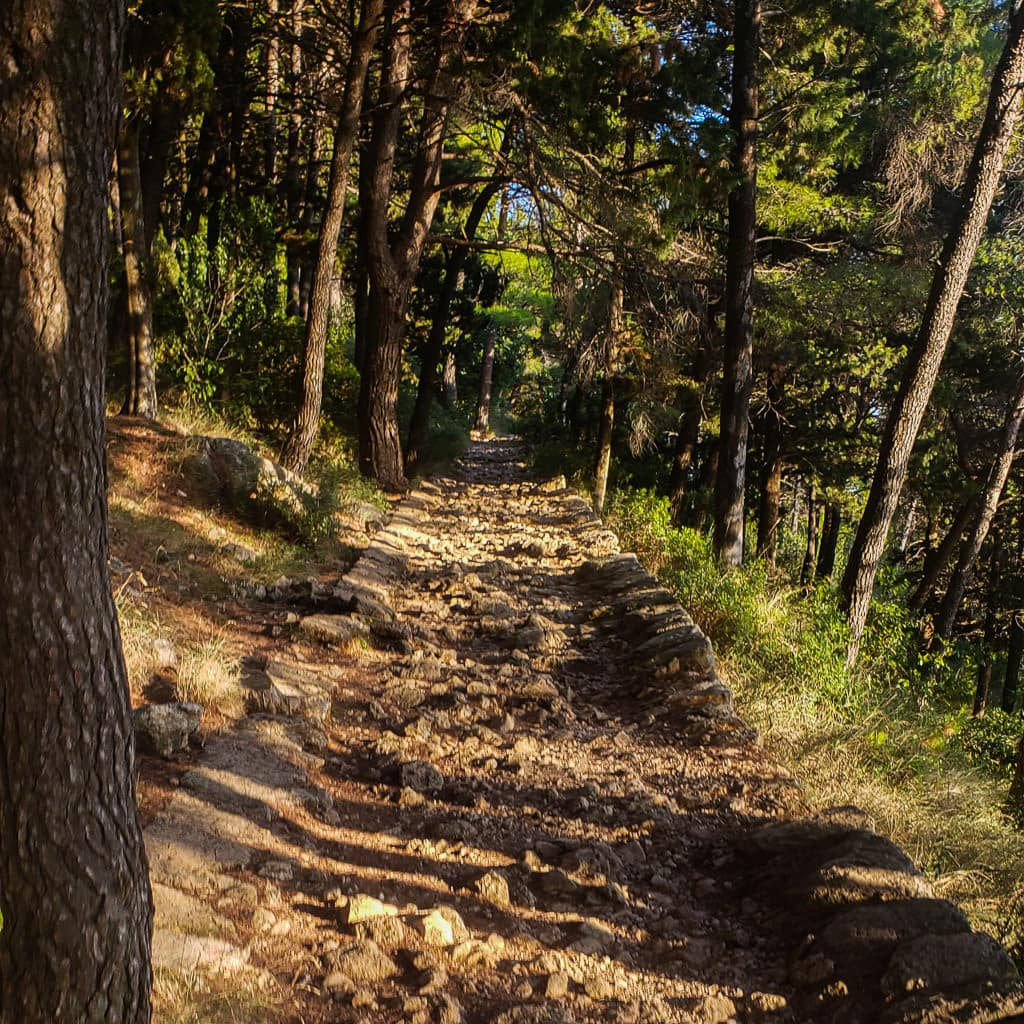 Starting section of Mount Srd Trail