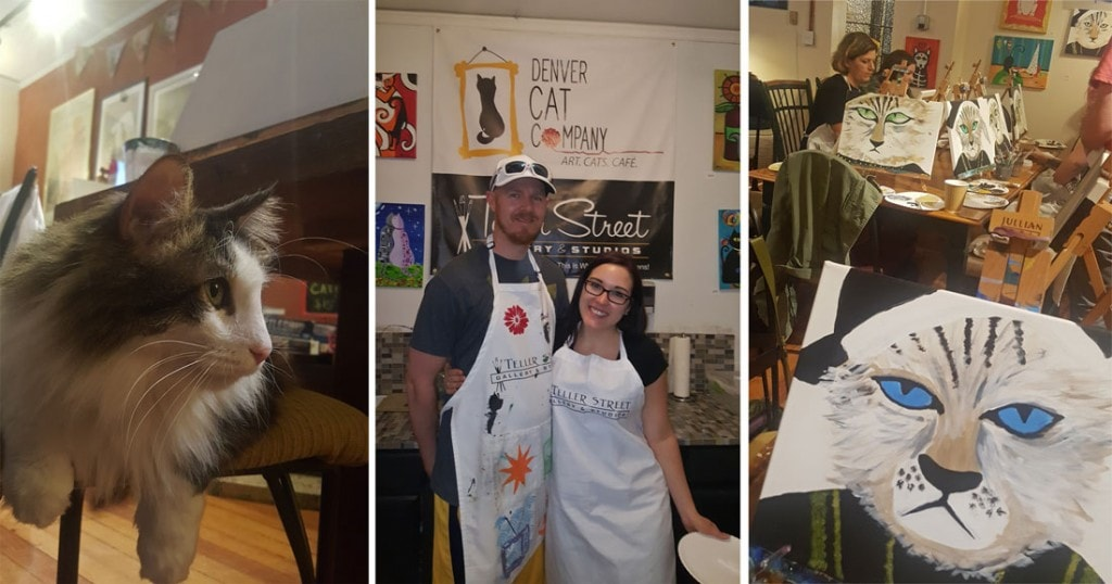 Taking a painting class at the Denver Cat Company in Denver, Colorado