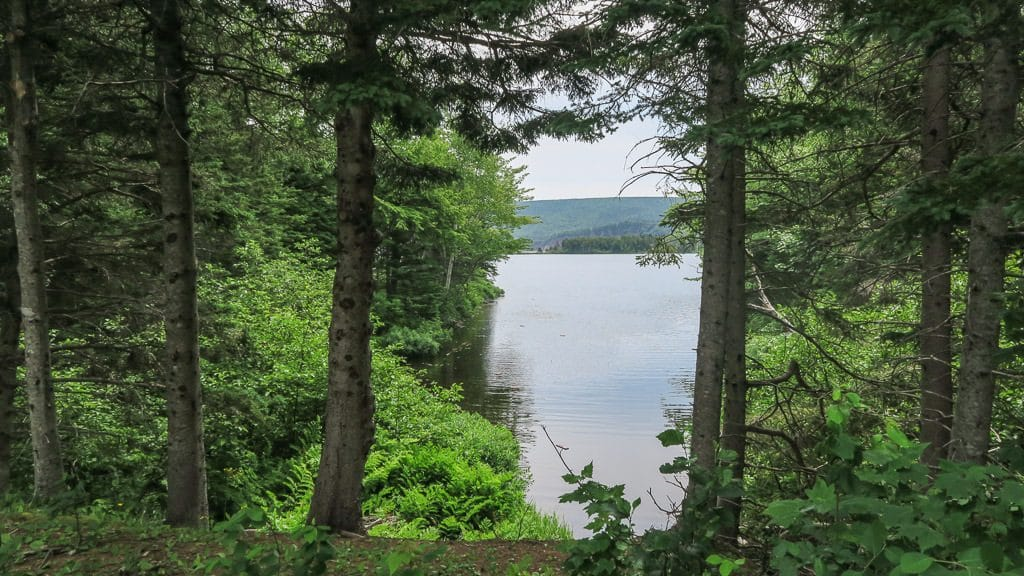 Looking out onto Freshwater Lake during one of our hikes in Cape Breton