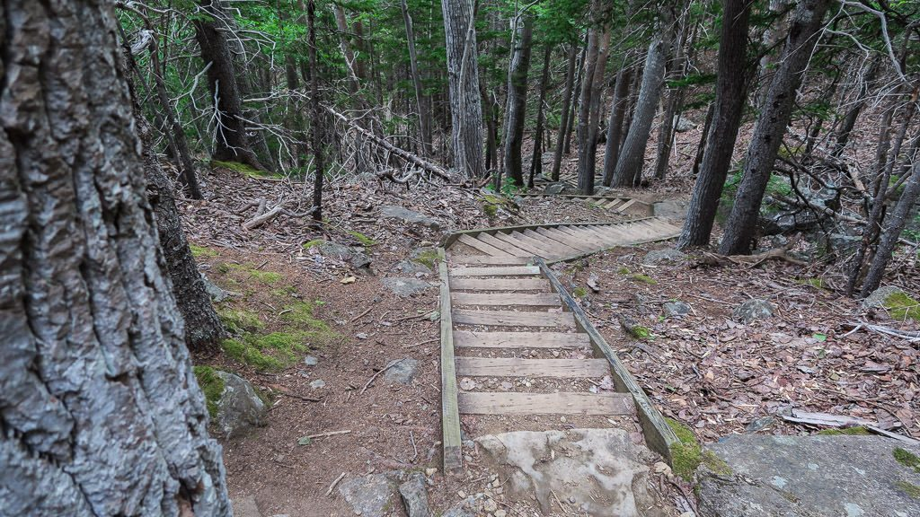 The stairs that are part of the Freshwater Lake Look-off trail