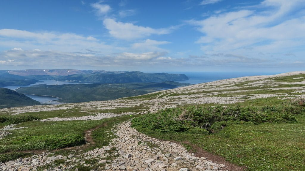 Rocky trail atop Gros Morne Mountain with patches of green grass and shrubs