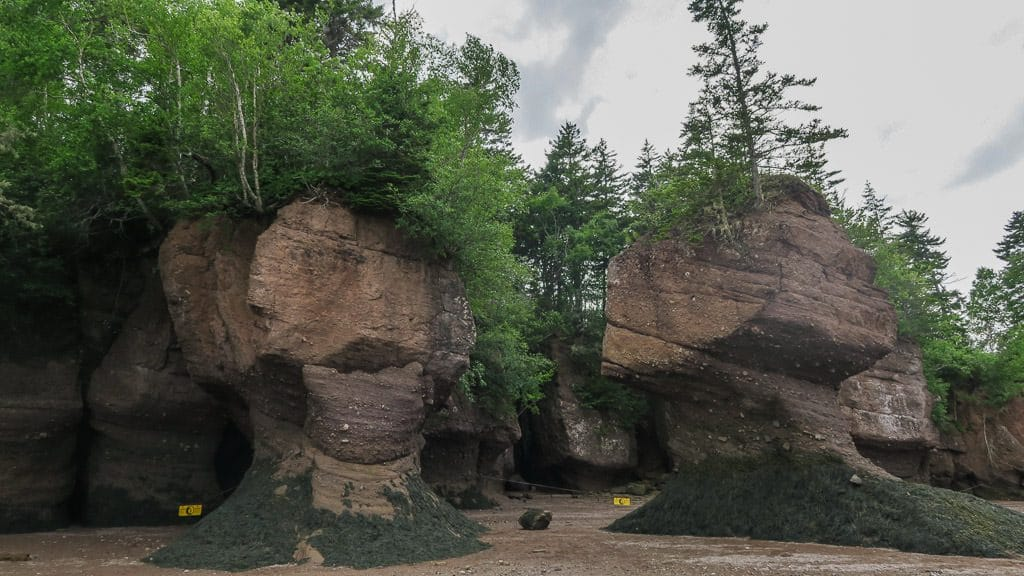 The Tides at Hopewell Rocks are some of the worlds largest