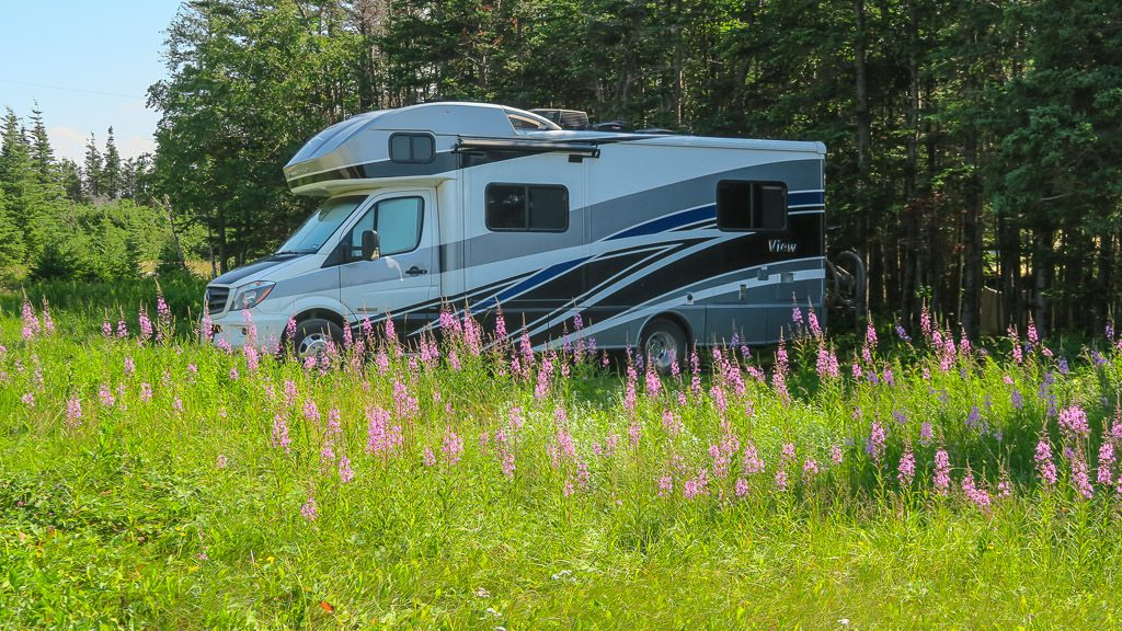 Our amazing RV Camping Spot surrounded by wildflowers at Shallow Bay Campground