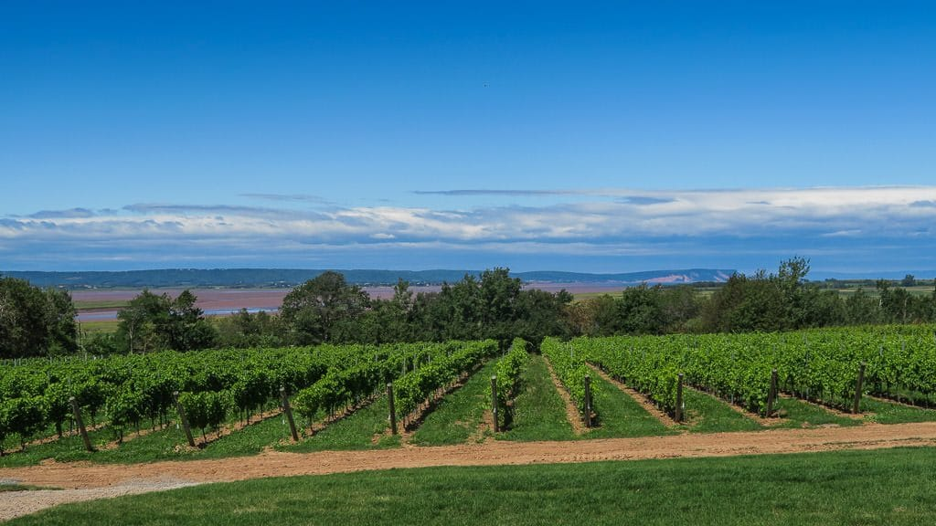 Lightfoot & Wolfville Vineyards in Nova Scotia