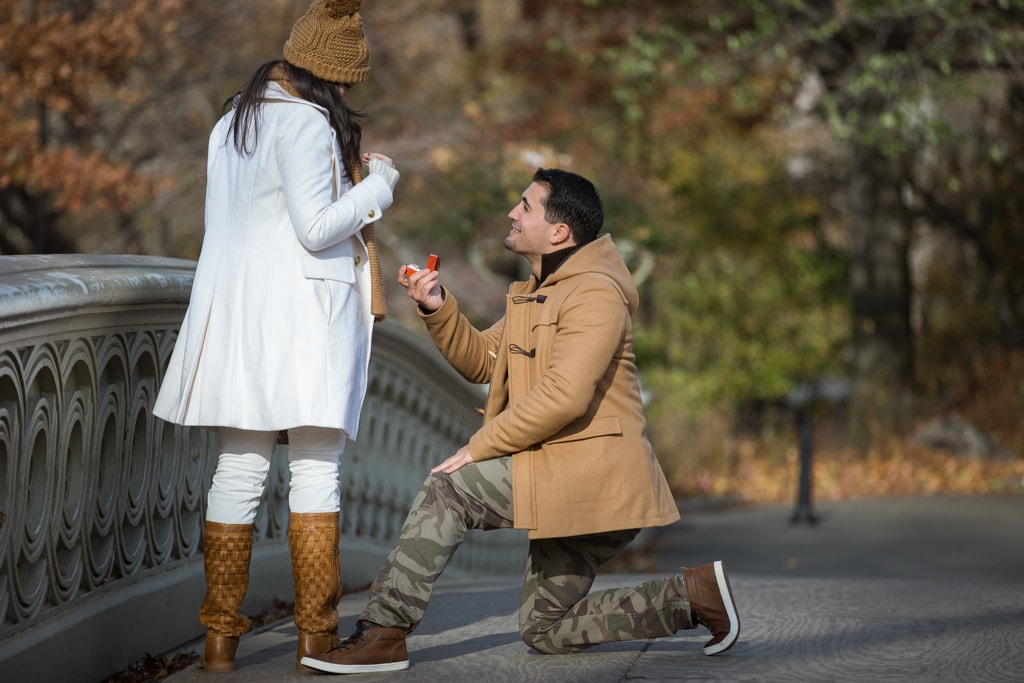 Photo 6 Holiday Season is the most popular time to propose in NYC   VladLeto
