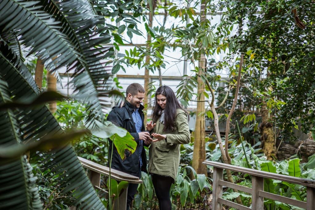 Photo 4 Wedding Proposal in Brooklyn botanical garden | VladLeto