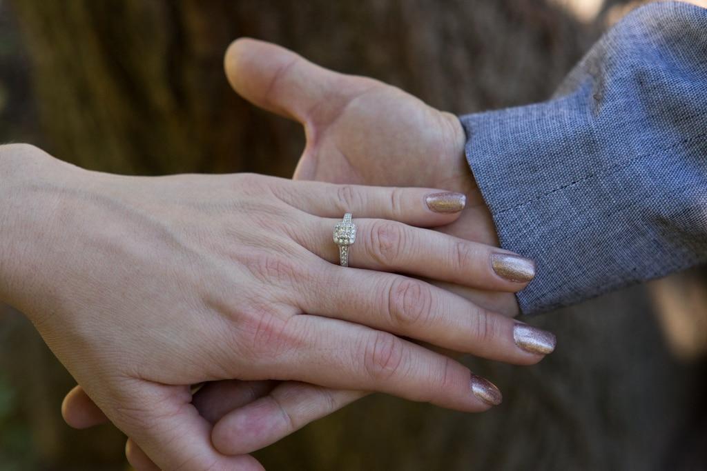 Photo 4 Bow bridge wedding proposal.   VladLeto