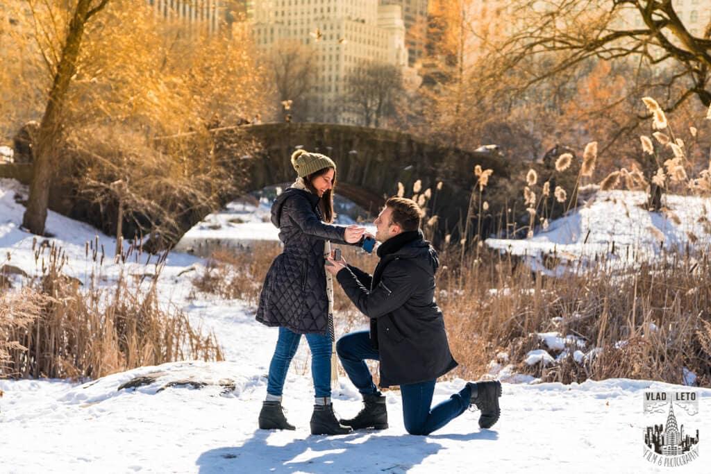 Photo 2 Marriage proposal under Gapstow bridge   VladLeto