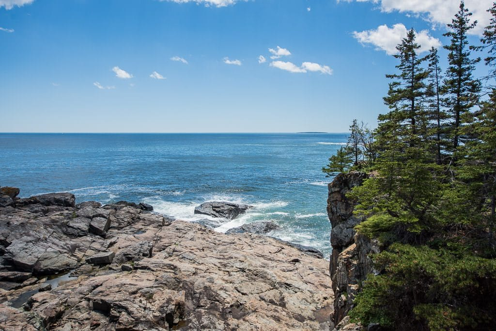 Blue sky day with tree lined cliff and ocean in Acadia National Park