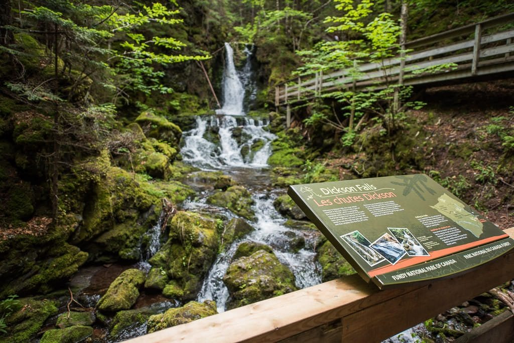 dickson falls in Fundy National Park