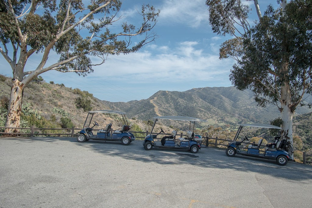 3 Golf Carts parked near each other on the hillside in Avalon