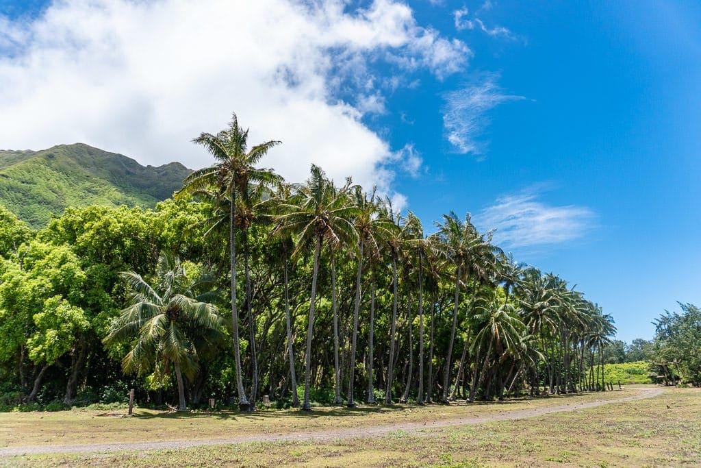 views Hiking to Kalaupapa Molokai