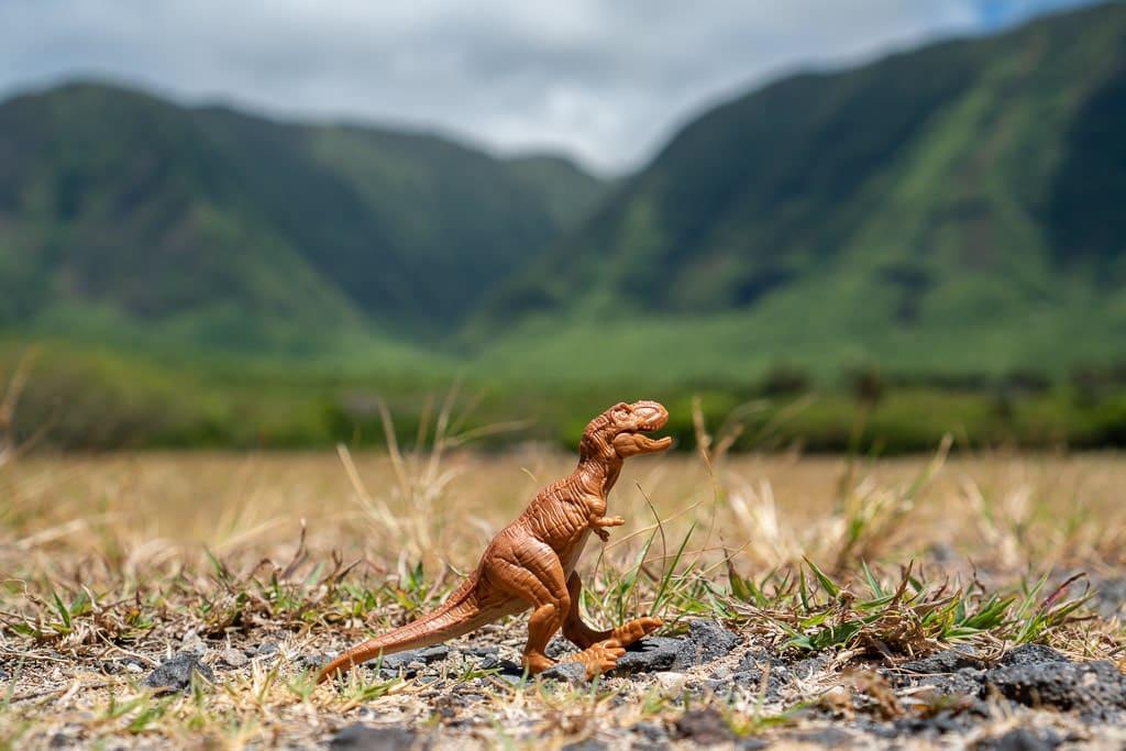 plastic dinosaur and views of Kalaupapa Molokai