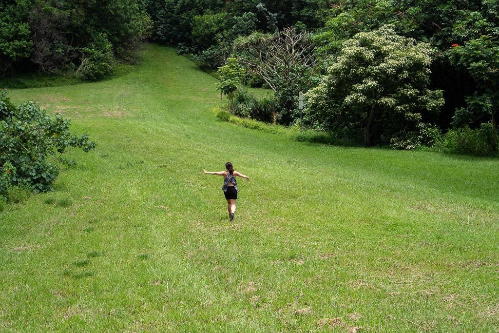 running through the open field at Ho'omaluhia Botanical Garden