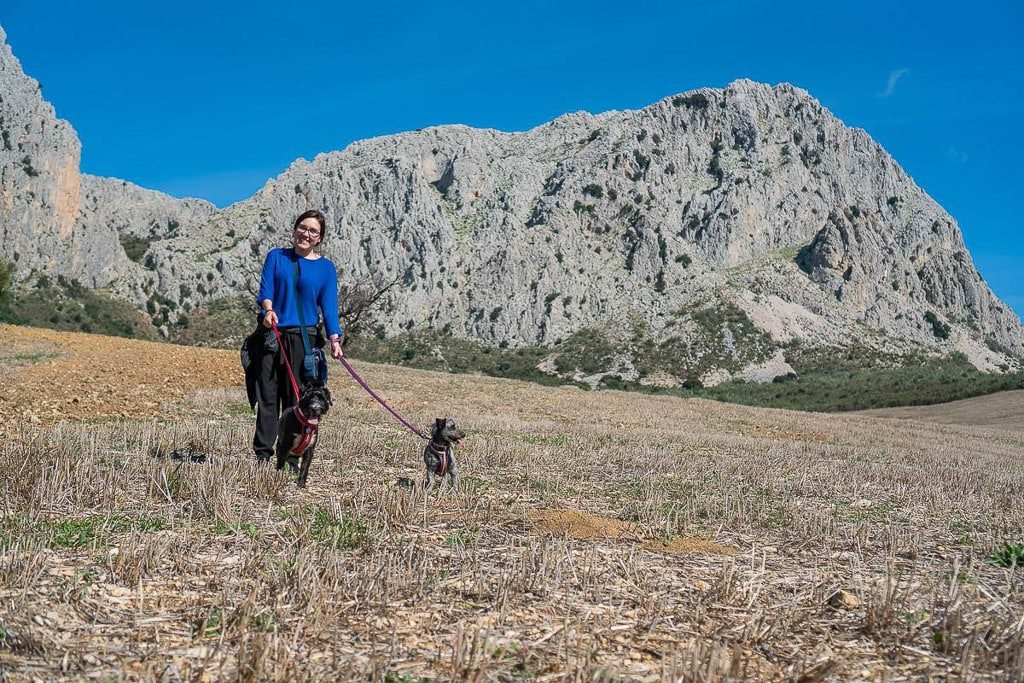 pet sitting in spain and walking 2 dogs