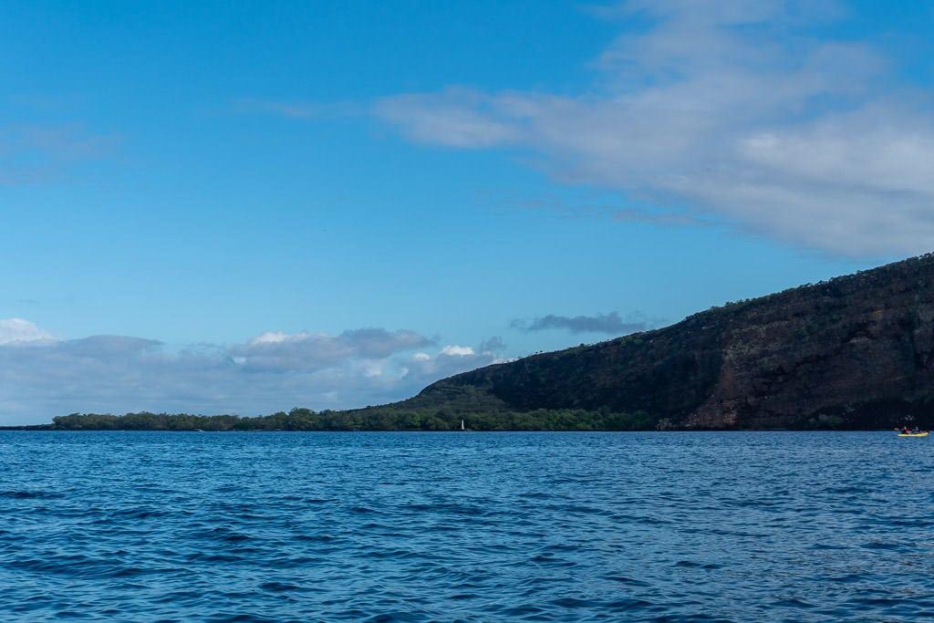 big island kayaking with wild dolphins and snorkeling kona Kealakekua Bay