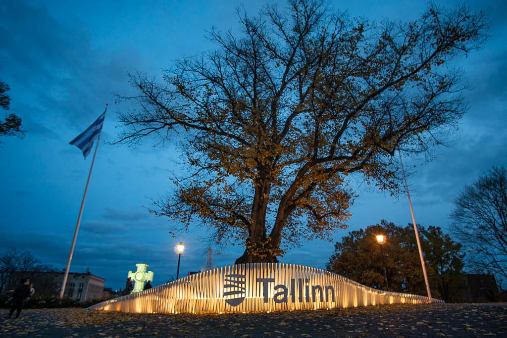 Tallinn sign up on hill at night