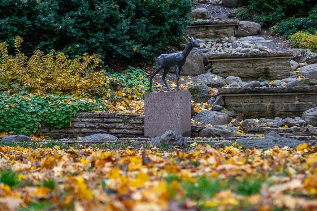 Deer statue in garden with autumn leaves