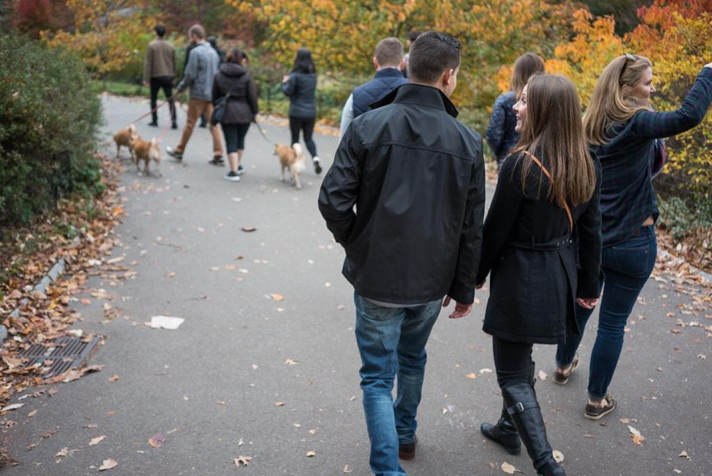 Photo Central Park - Bow Bridge secret proposal. | VladLeto