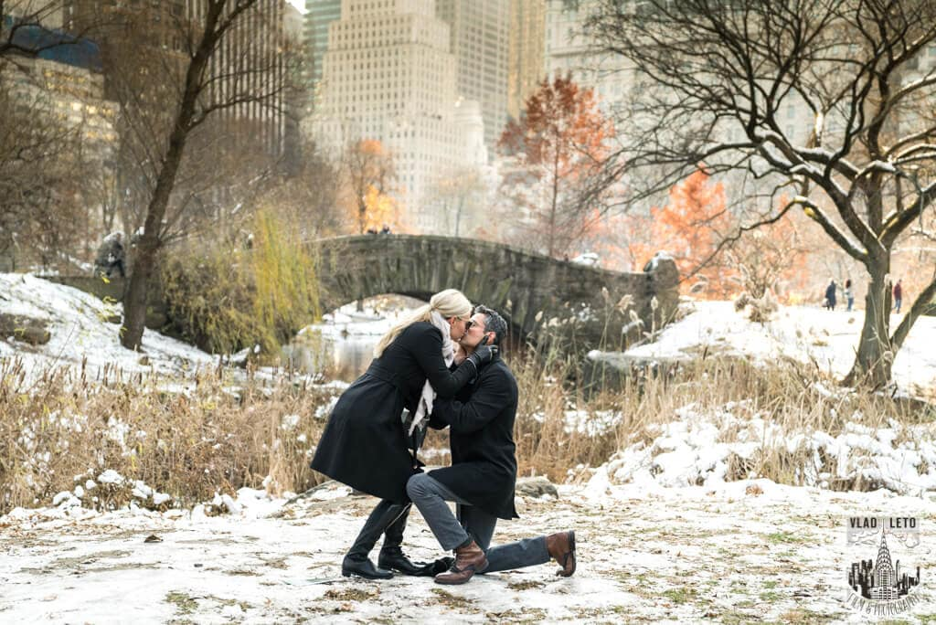 Photo 2 Central Park Gapstow Bridge Proposal | VladLeto