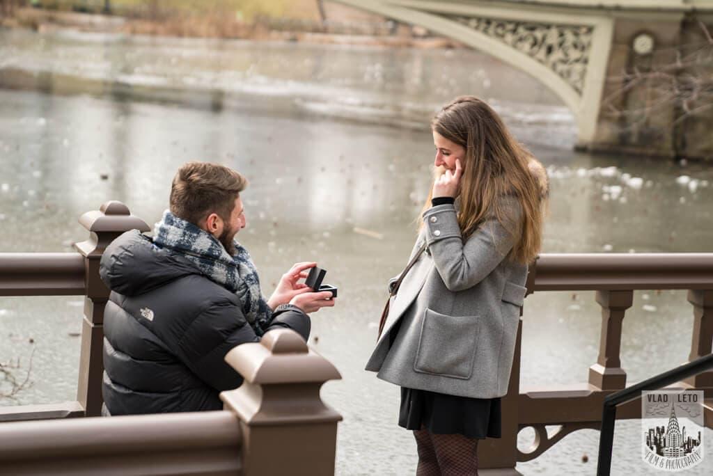 Photo 4 Central Park proposal by Bow Bridge. | VladLeto
