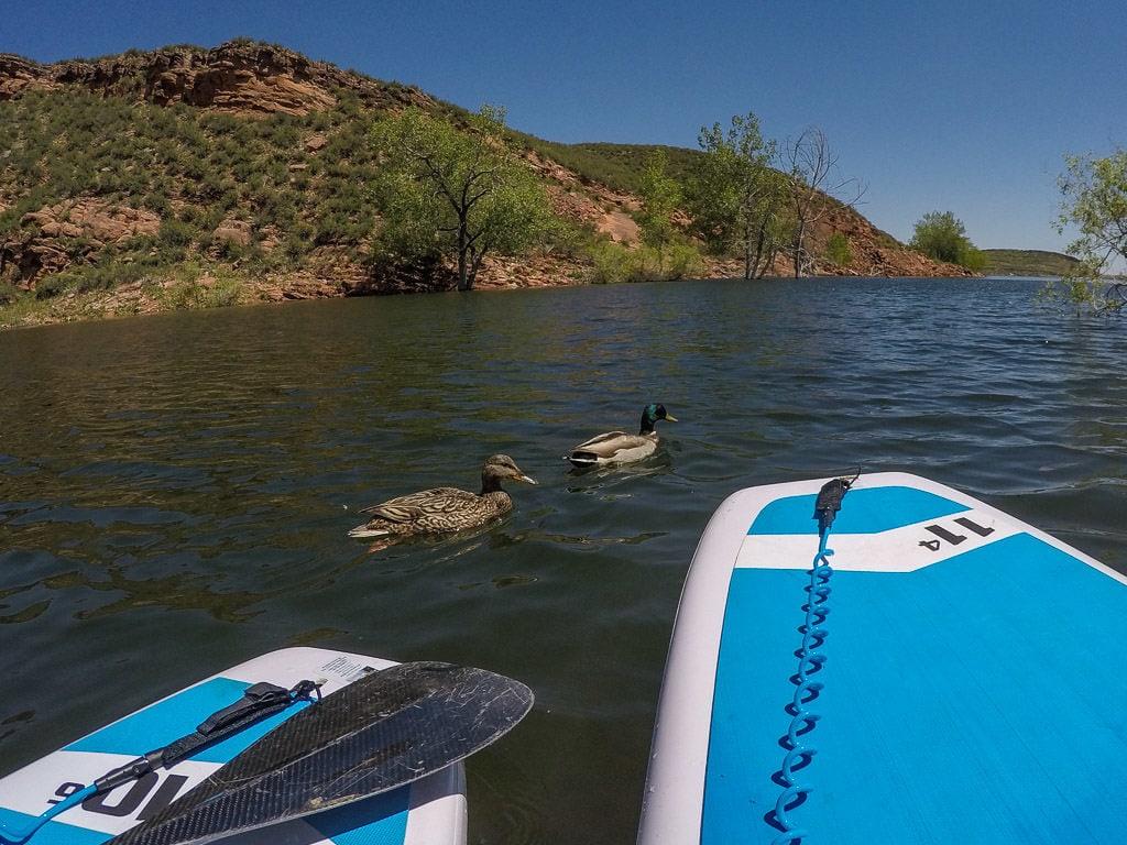 sup-in-colorado-horsetooth-reservoir