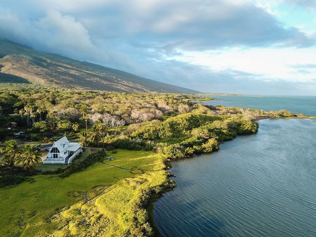 house sitting in hawaii and enjoying island life