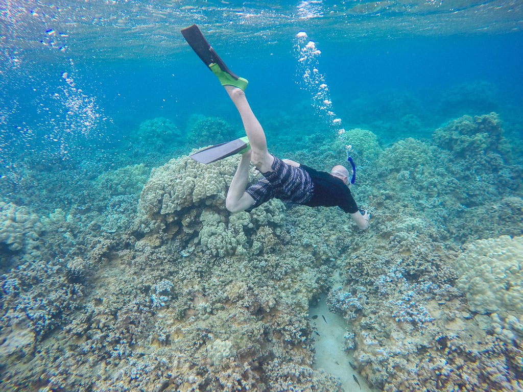 buddy doing underwater photography while snorkeling in molokai
