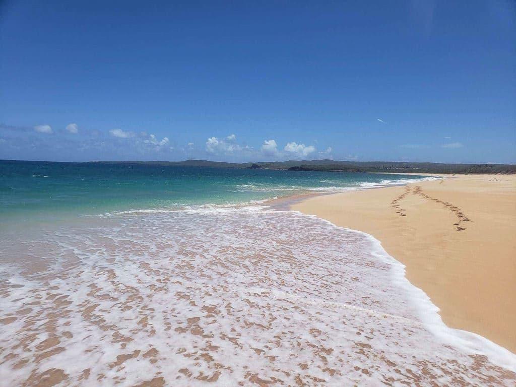 footprints in the sand in molokai hawaii