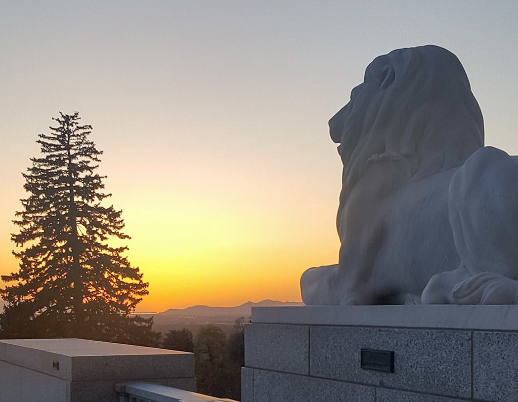 Sunset at the Utah Capitol Building. Lion statue in the foreground, and a tree and mountains in the background.
