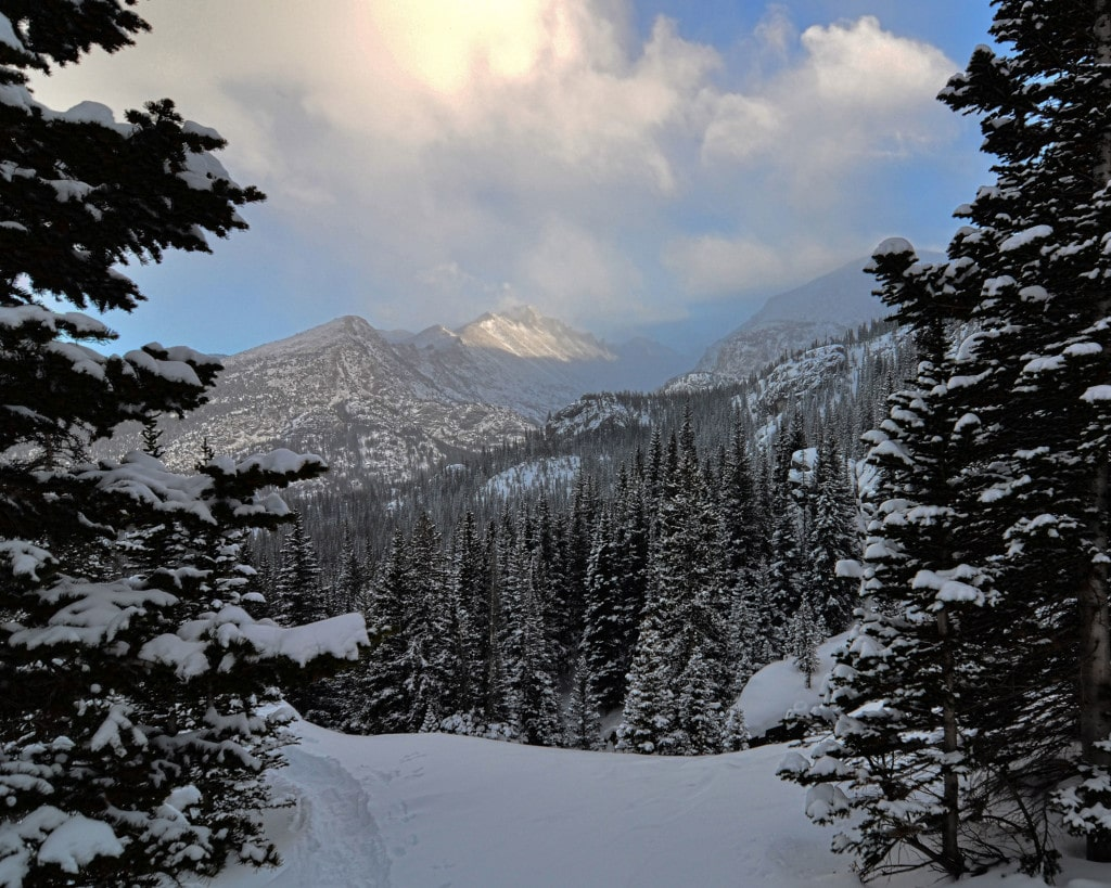 View from hiking trail near Bear Lake in Rocky Mountain National Park