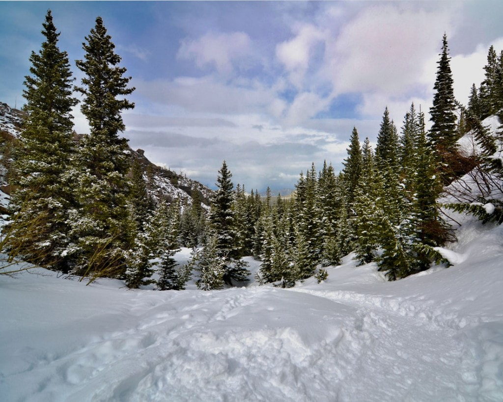 Winter Scene in Rocky Mountain National Park covered in snow