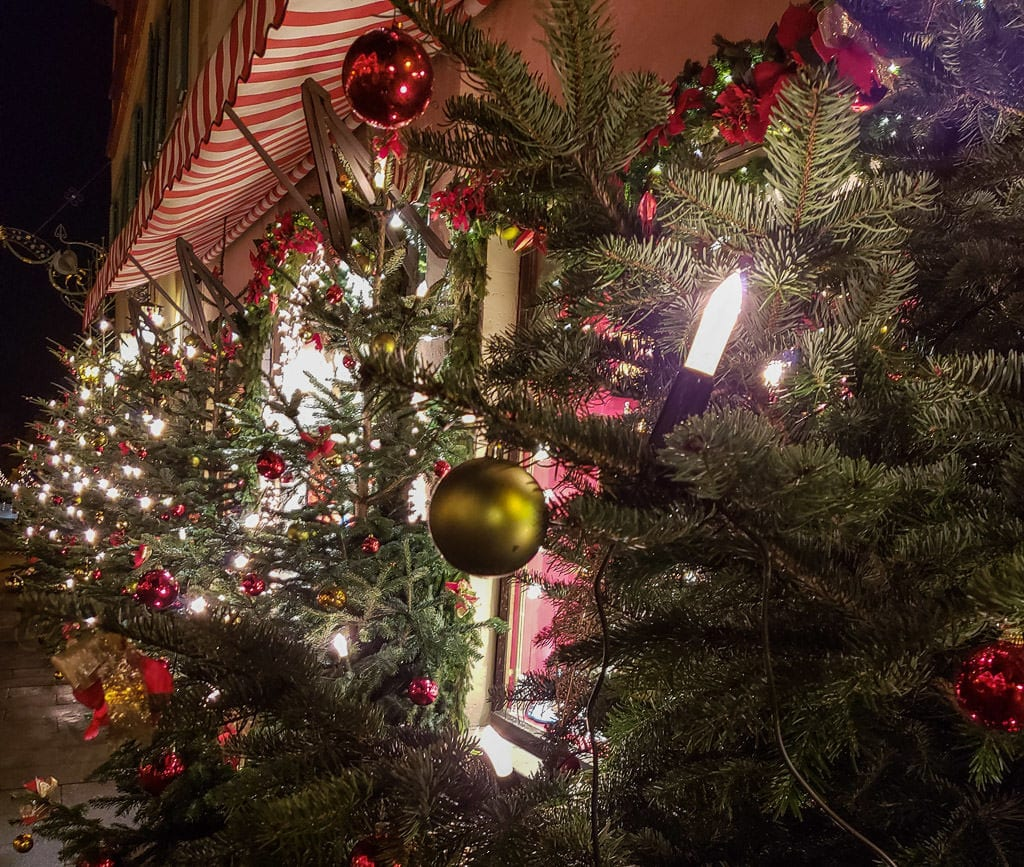 christmas trees in rothenburg germany