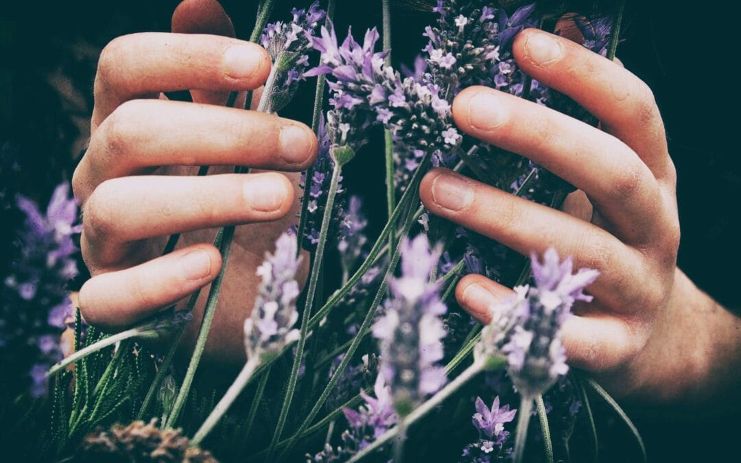 5 Essential Oils that Every Mom Should Have