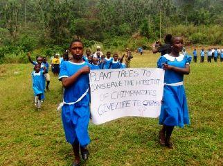 Cameroon: Environmental Education leaves classrooms