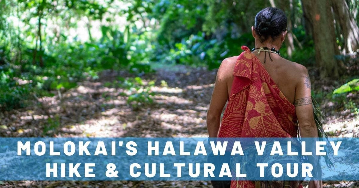 A Glimpse of 'Old Hawaii' on Molokai's Halawa Valley Hike & Cultural Tour