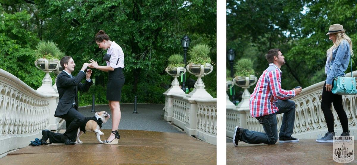 Photo 10 Central Park Proposal: Tips, Spots & Best Places to Proposal in Central Park   VladLeto   VladLeto