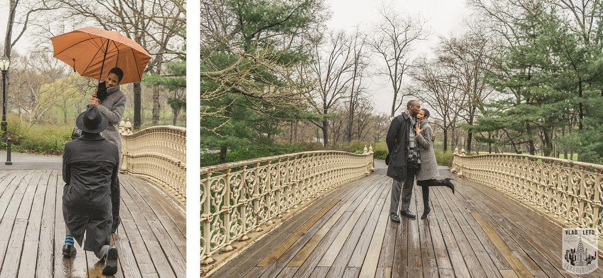 Photo 2 Central Park Proposal: Tips, Spots & Best Places to Proposal in Central Park   VladLeto   VladLeto