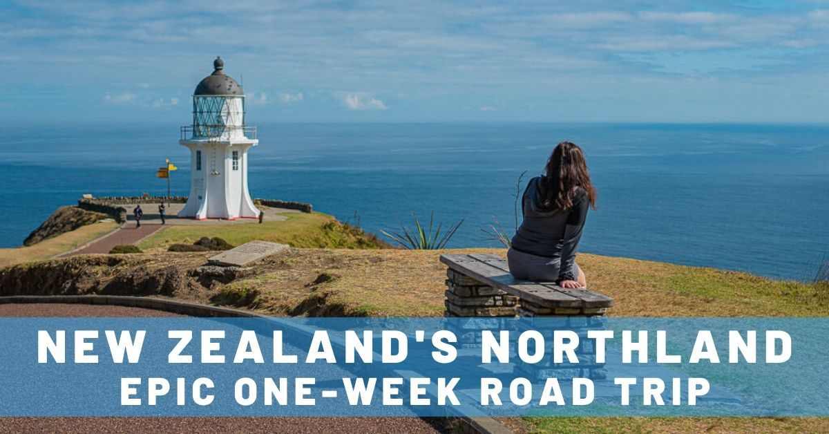 Northland New Zealand Road Trip: One Week of Beaches, Backpackers & Beautiful Views!